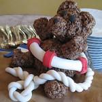 teddy-bear close up
