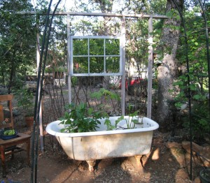 Garden window wall and tub
