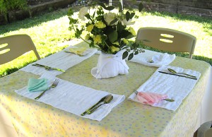 Baby Shower Table Setting with Cloth Diapers